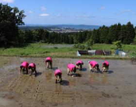 石川県七尾のコミュニティ